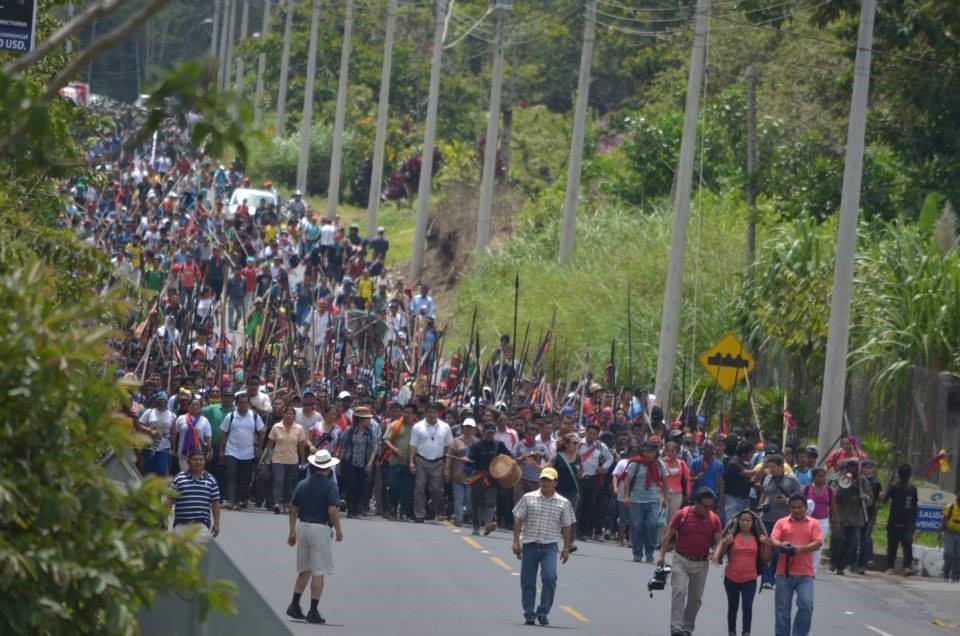 Amazonía - Criminalización