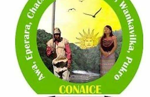 Conaice, organización regional de Costa, frente a caso Nankints