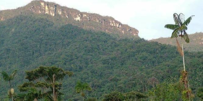 Desde la selva: Pueblo Shuar Arutam envía carta con sus razones sobre la defena de su territorio