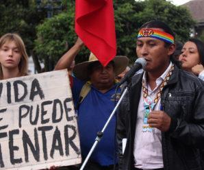 Juyayay Inti raymi! Por un Ecuador libre de transgénicos