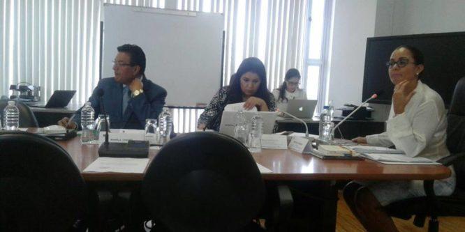 Comisión de Justicia de la Asamblea Nacional archiva pedido de Amnistía para luchadores sociales