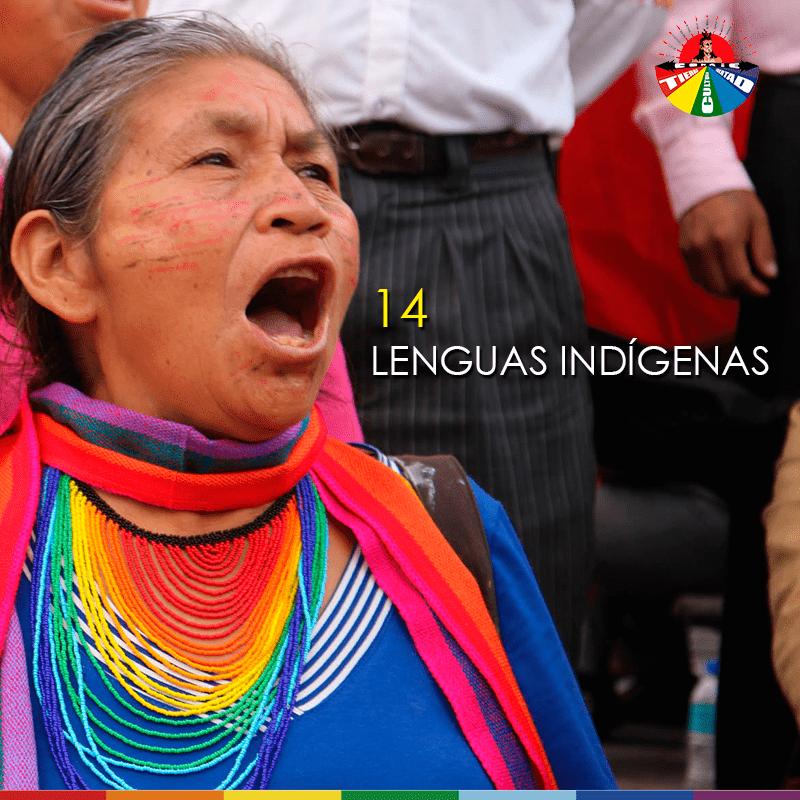 Lengua Indígena 2019-3