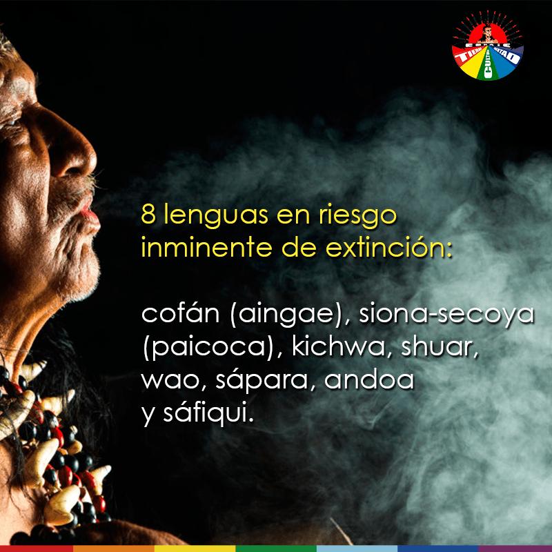 Lengua Indígena 2019-4