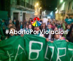 LA CONAIE RESPALDA LA DESPENALIZACIÓN DEL ABORTO POR VIOLACIÓN