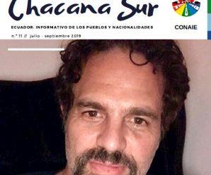Revista digital Chacana Sur #11