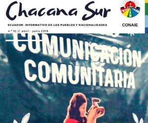 Revista digital Chacana Sur #10