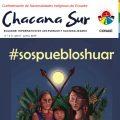 Revista digital Chacana Sur #1