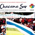 Revista digital Chacana Sur #4