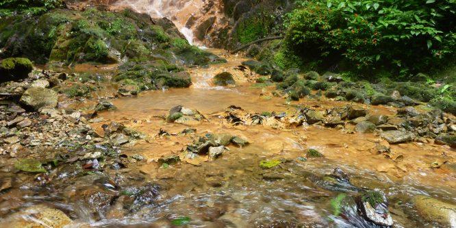 Encuentro de comunidades, pueblos y organizaciones del norte, por el agua y la vida. Por un Ecuador libre de minería metálica